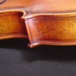 viola(2)
