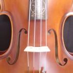viola(5)